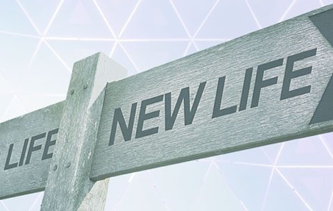 Old life and new life board