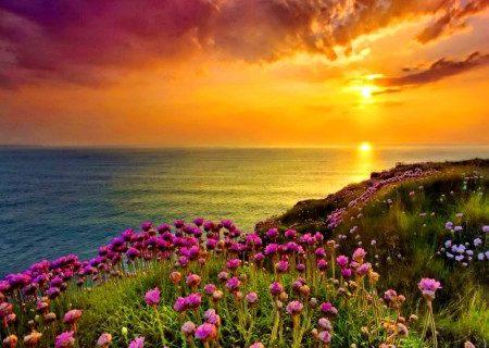 Beautiful Scenery
